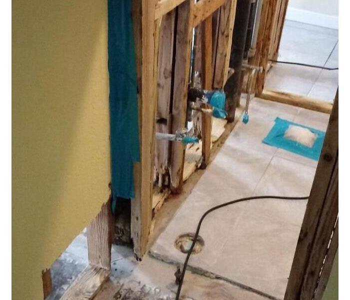 Mold Damage in Los Angeles Home After