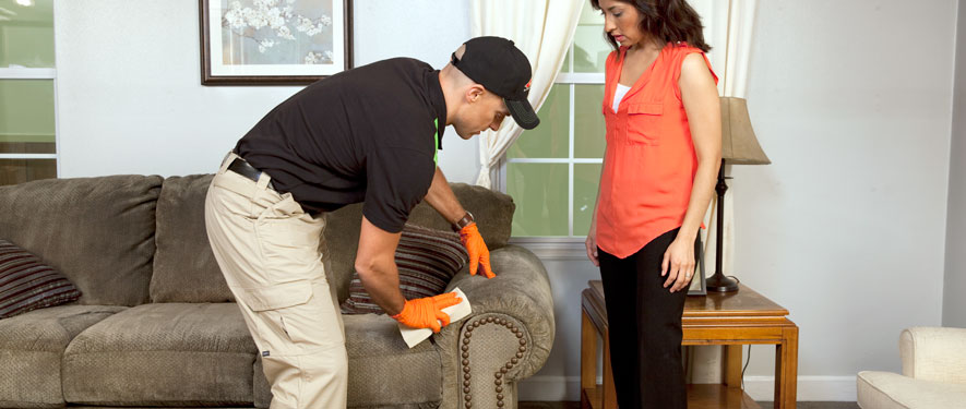 Alhambra, CA carpet upholstery cleaning